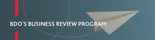 BDO Business review program